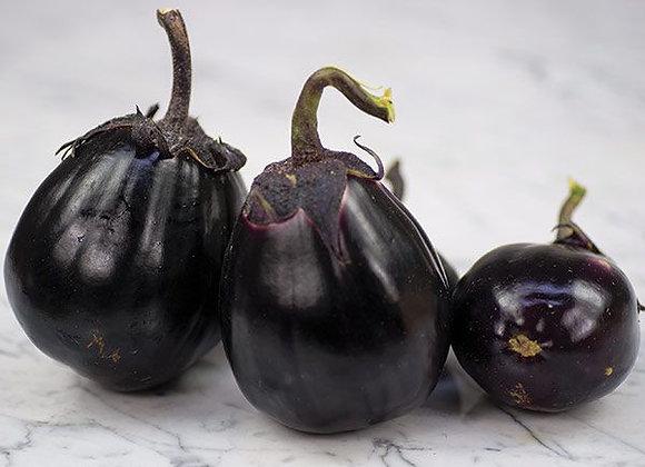 Melanzana Mitoyo (Solanum melongena)