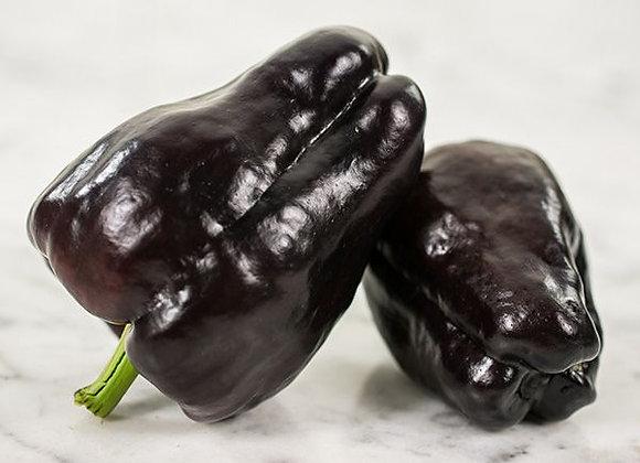 Peperone Zulu (Capsicum annuum)