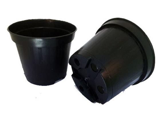 Vasetto semina diametro 10 cm -50 Pezzi