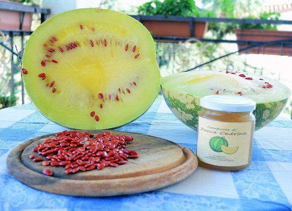 Zucca Cedrina (Cucurbita citrullus)