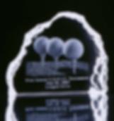 Small Crystal Iceberg Award