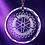Thumbnail: Round Ornament/Medal
