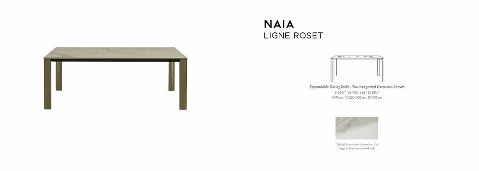 Naia extension table