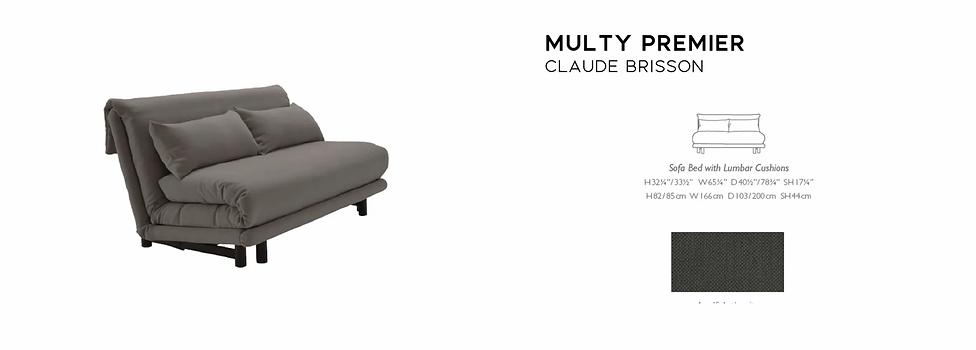 Multy Sleeper Sofa