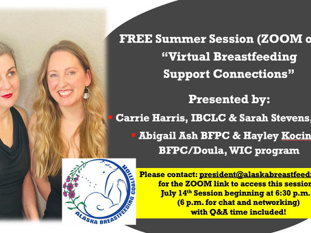 Free Summer Zoom Session: Virtual Breastfeeding Support Connections