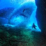 AM_Baja Adventure_092315_8430.jpg