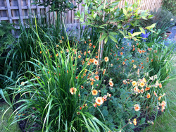 Perennial bed with bay