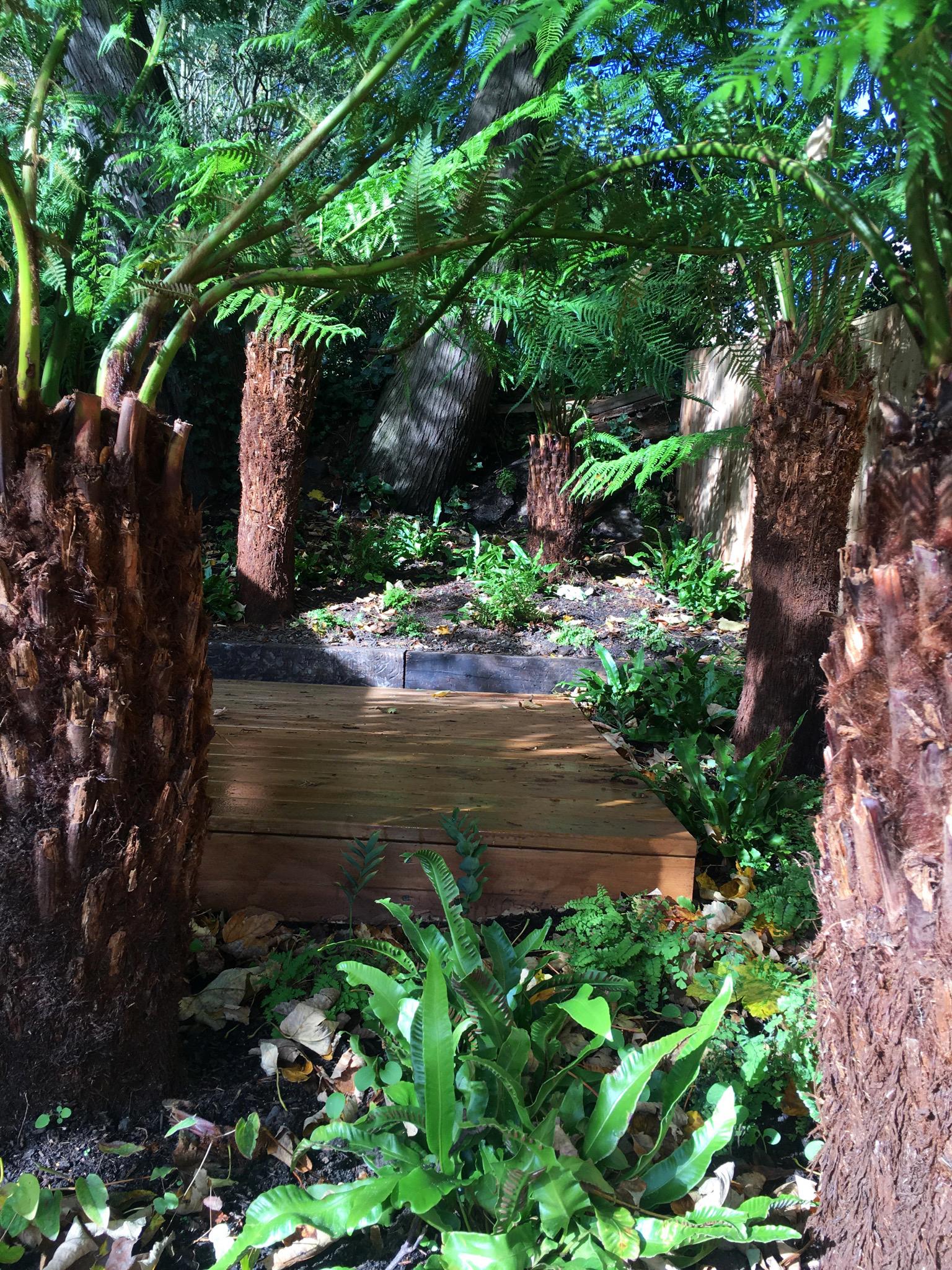 Stepped woodland garden