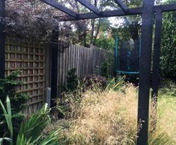 Pergola underplanted with grasses