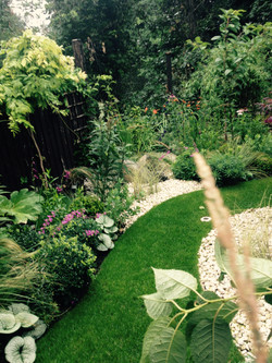 SydHill2, Lush & Fern Garden Design