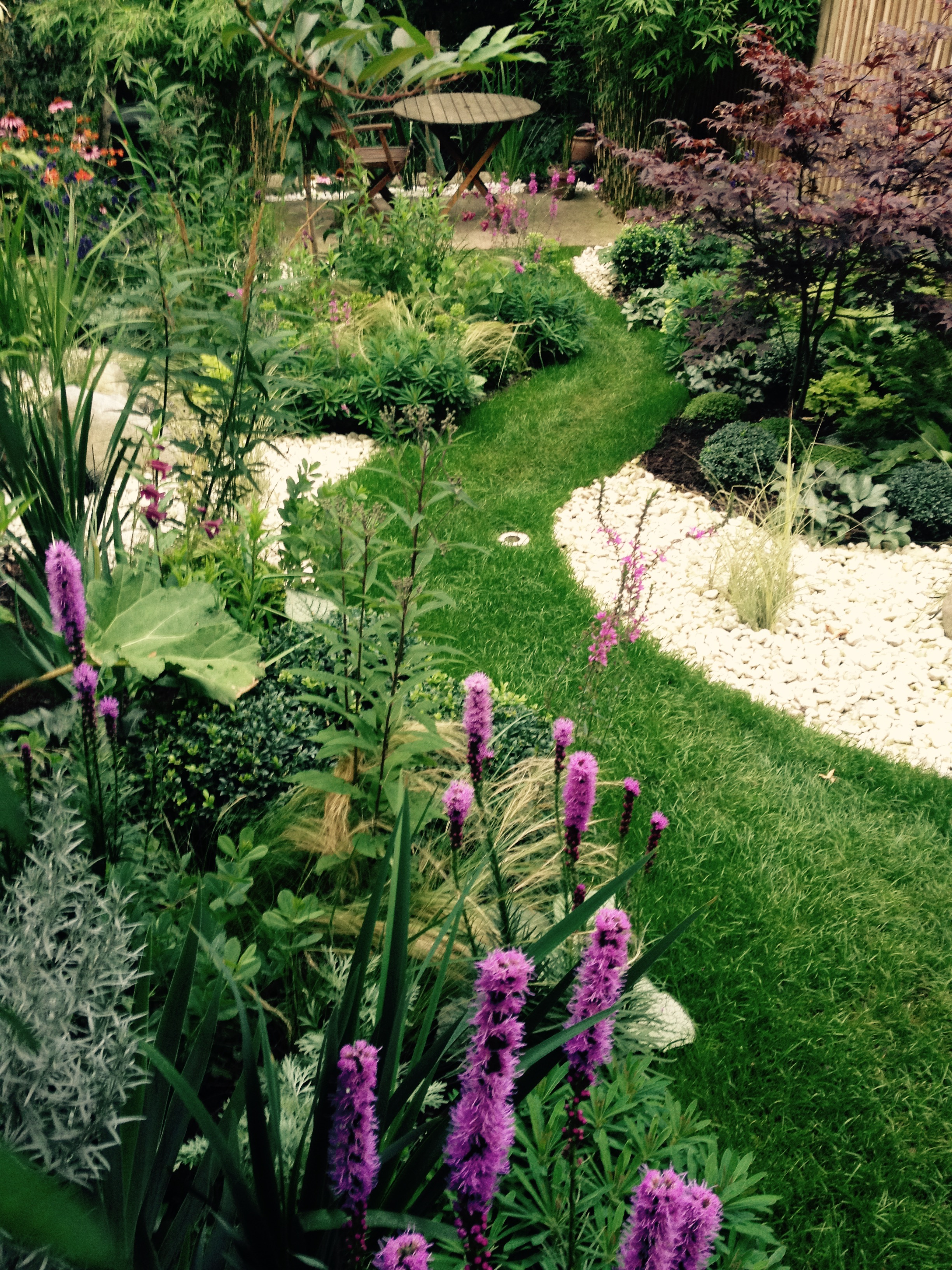 SydHill3- Lush & Fern Garden Design