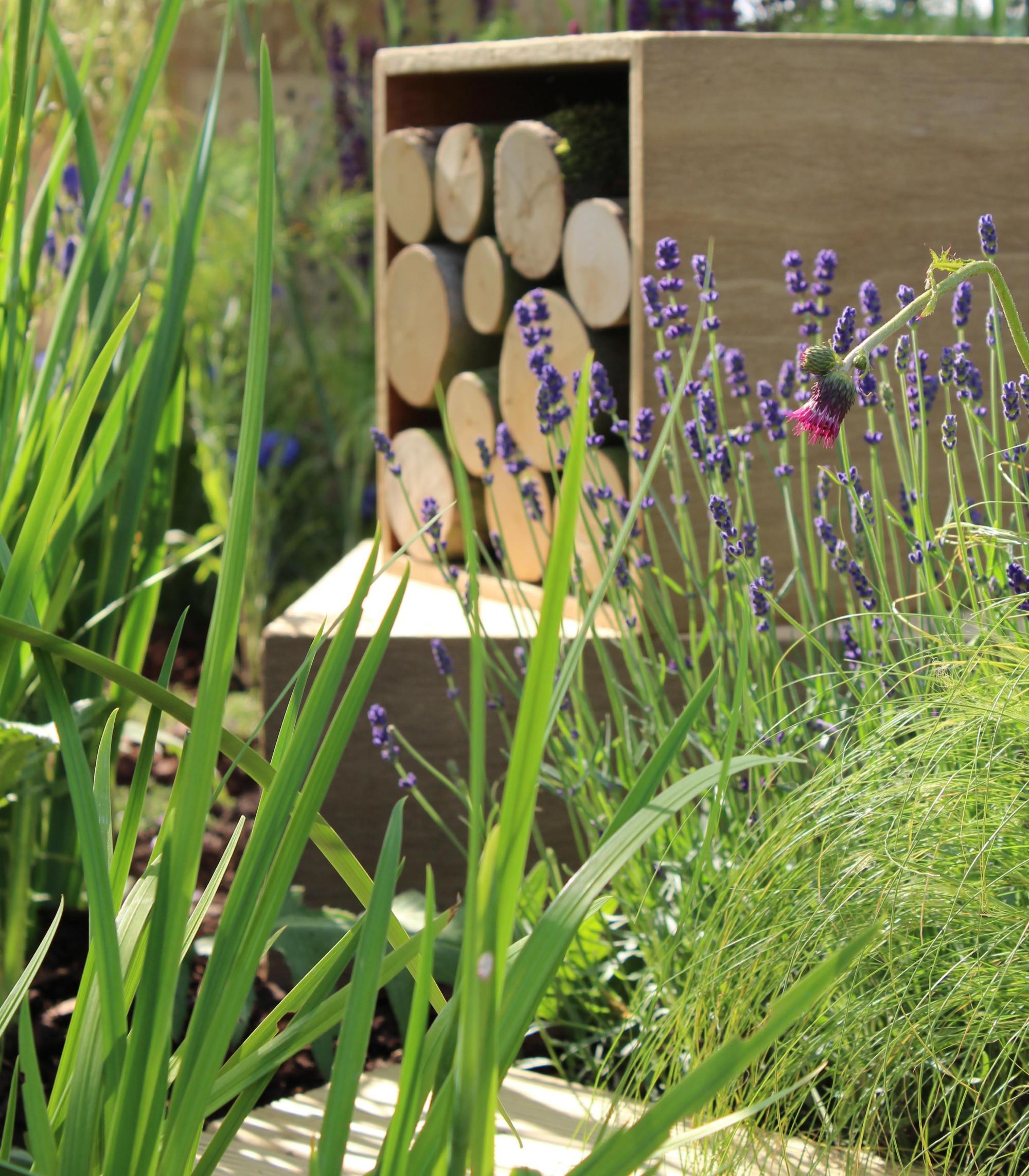 Online Garden Design Consultation