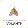 Lutter contre les moustiques à Marseille avec Anti Punaises de Lit Marseille ®