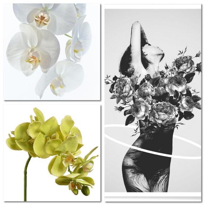 Fleurir son intérieur donne toujours le sourire les senteurs et couleurs boostent le moral ! Et si o