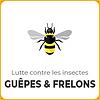 Lutter contre les guêpes et les frelons avec Anti Punaises de Lit Marseille ®