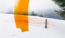Nebel-Landschaft