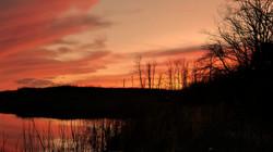 sunset fishing aff