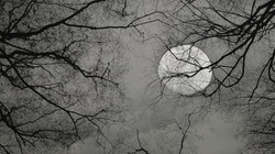 moon edit2