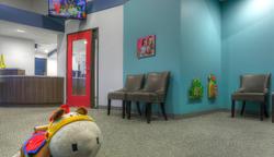 Reception Area & Check-In Desk