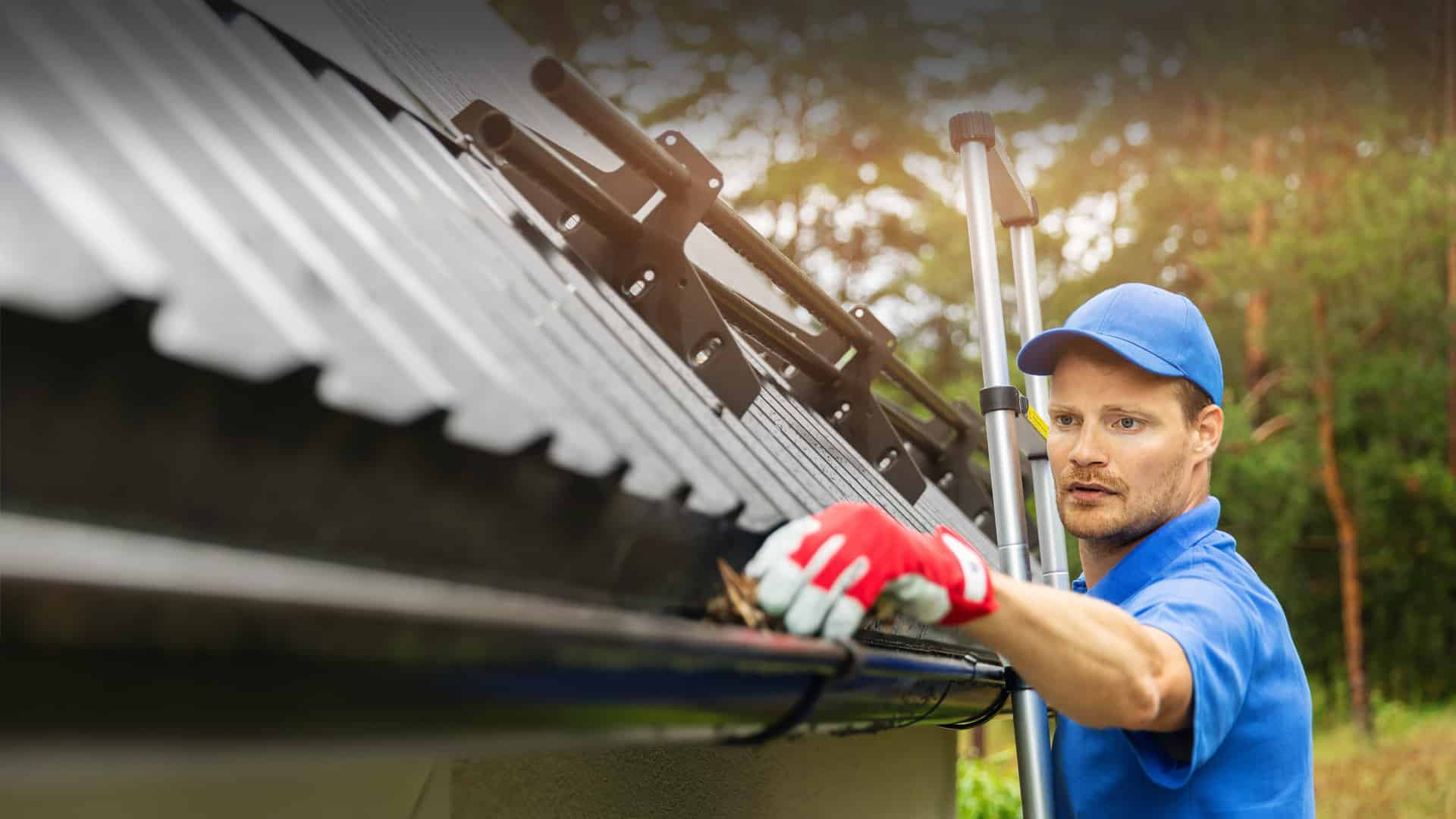 roof-and-driveway-cleaning-slider2-2.jpg