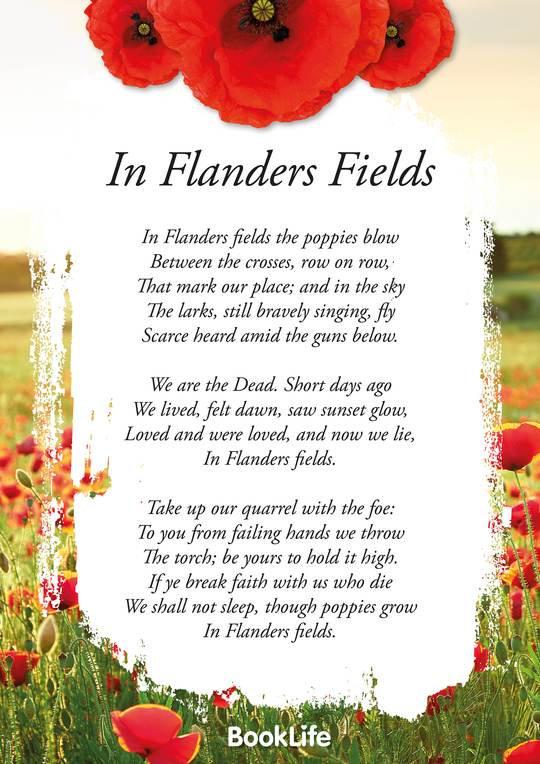 FlandersField_540x.jpg