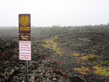 Close to Hilo Hawaii | Waiakea
