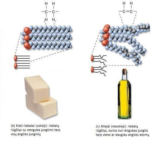 Riebalai yra kieti kambario temperatūroje, nes juose esančius trigliceridus sudaro santykinai daugiau tiesių, sočiųjų riebalų rūgščių. Aliejai yra skysti kambario temperatūroje, nes jų trigliceridai susideda iš santykinai lankstesnių nesočiųjų riebalų (tiek mononesočiųjų, tiek polinesočiųjų).