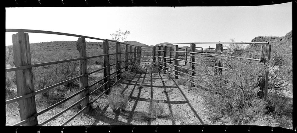 web_cattlepen.jpg