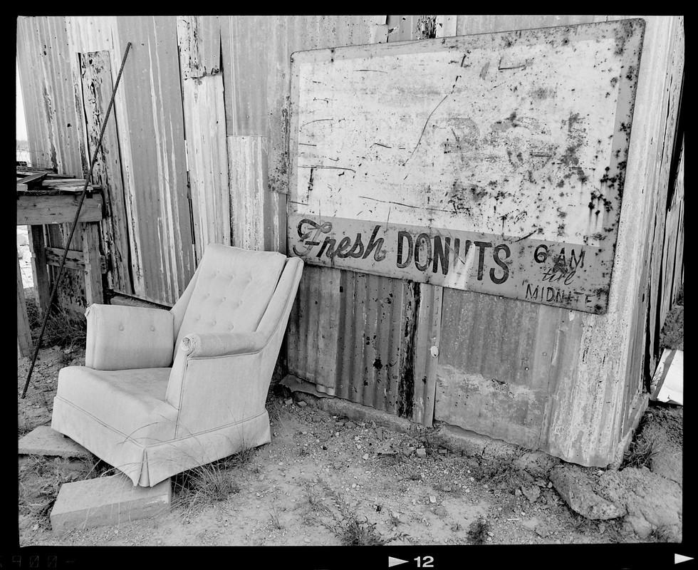 web_donuts.jpg