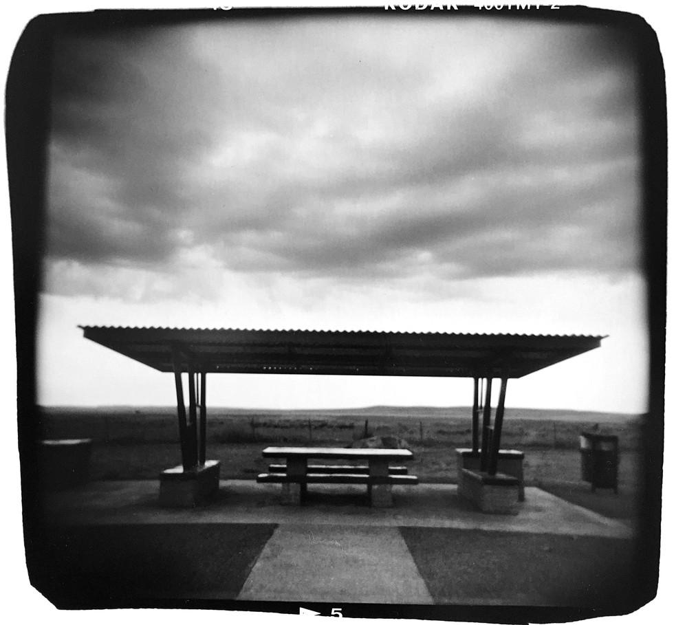 web_picnic.jpg