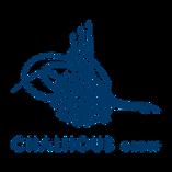 Chalhoub Group.png