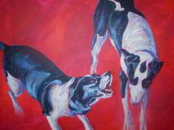 Dogs of War VI (Bellicose Rhetoric)