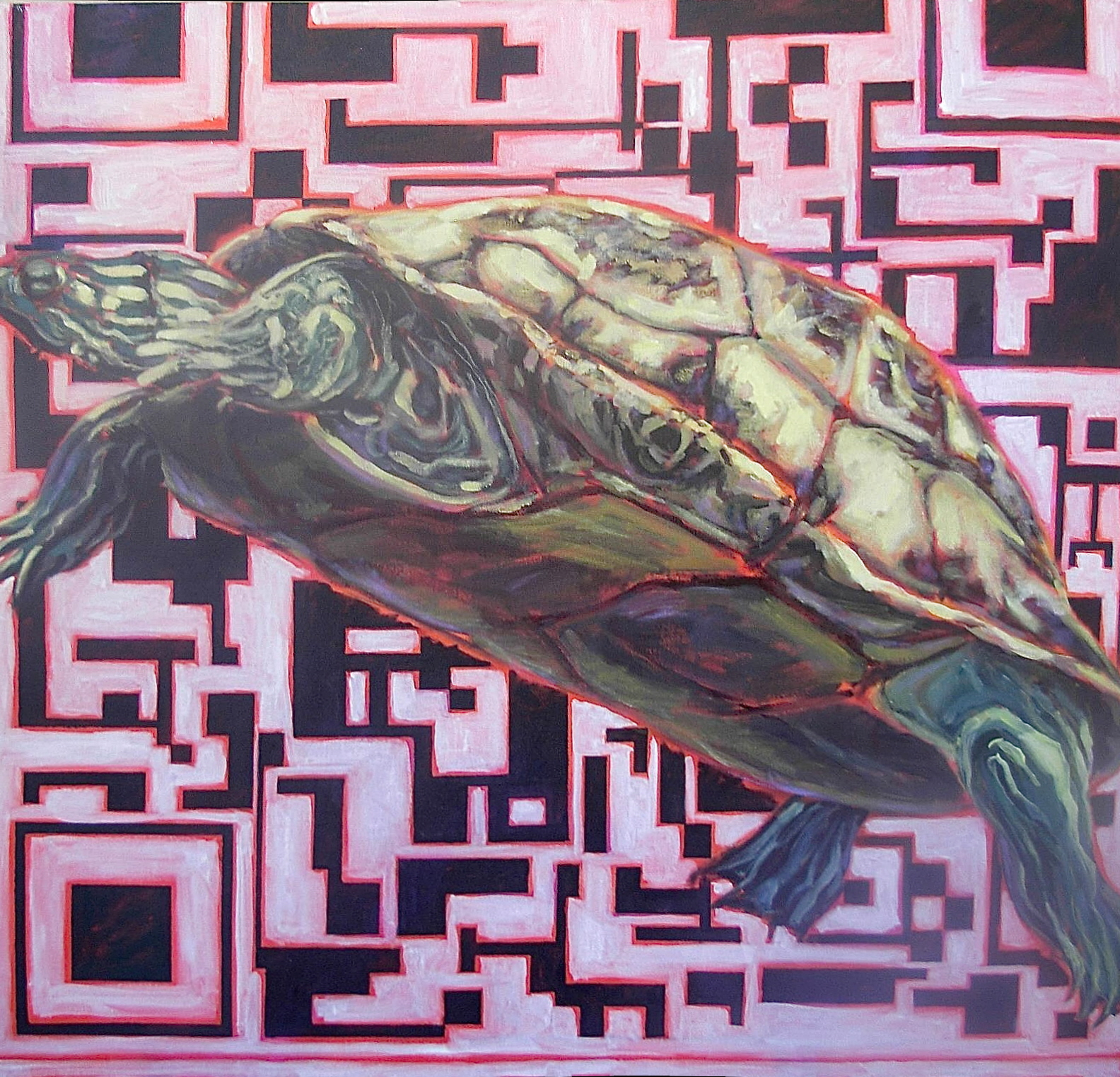 Nature/QR Code II (Turtle)