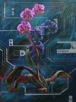 Doppleganger Passages (Bloom, Fade)