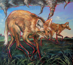 Time Is a Tornado (Red-Maned Wolves)