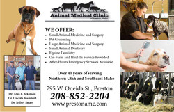 Animal Medical Clinic.jpg