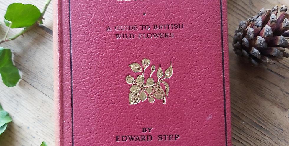 Wayside and Woodland Blossoms - Edward Step