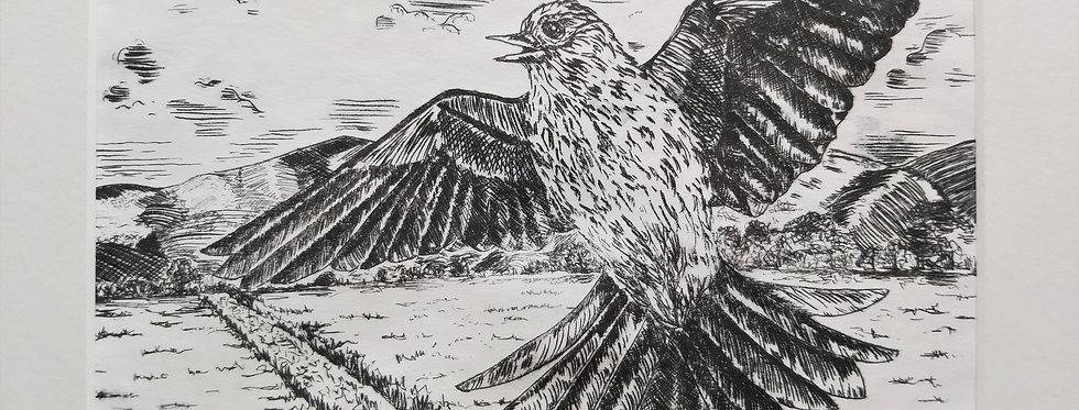 A Skylark Sings At Baldoon - Drypoint etching