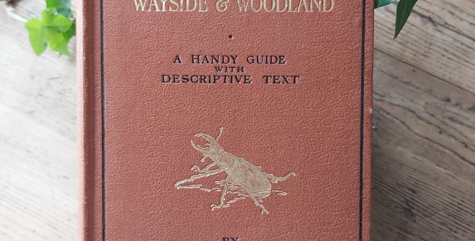 Life of the Wayside & Woodland - T.A. Coward