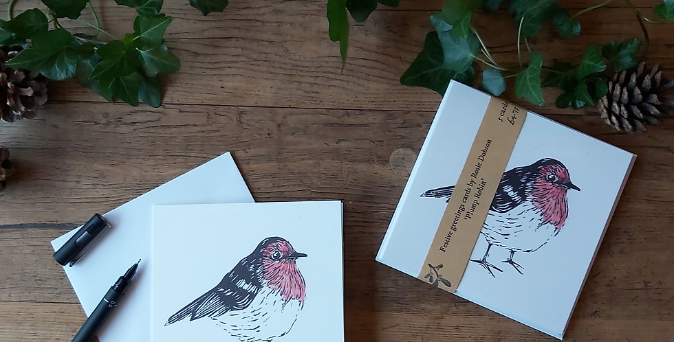 Plump Robin - Festive Card Pack