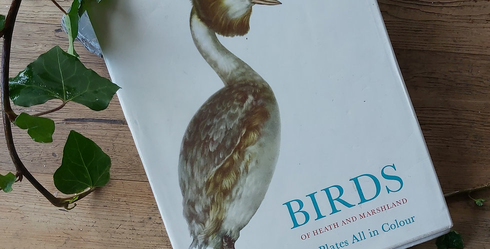 Birds of Heath and Marshland - O Stepanek