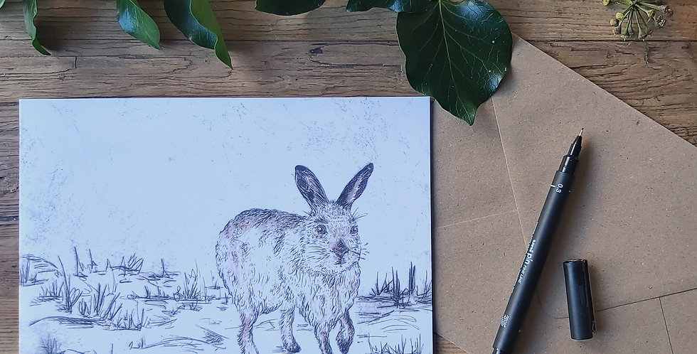 Midwinter Mountain Hare - blank greetings card