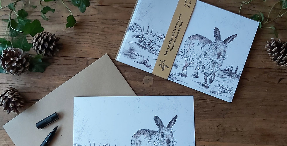 Midwinter Mountain Hare - Festive Card Pack