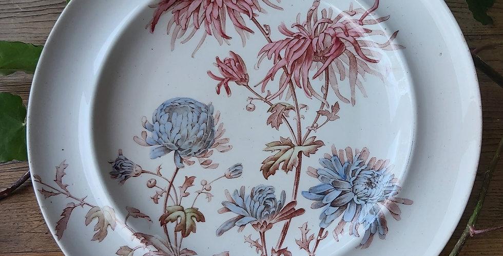 Antique chrysanthemum plate