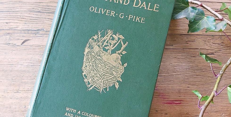 Hillside Rock & Dale - Oliver G. Pike