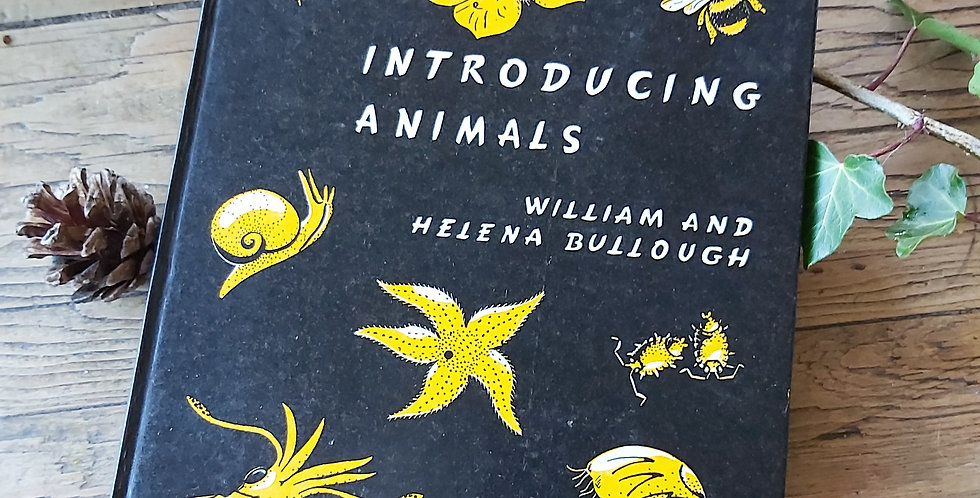 Introducing Animals - William & Helena Bullough