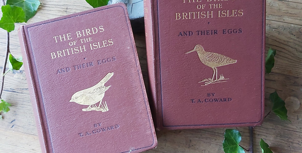 The Birds of the British Isles -Series 1 & 2