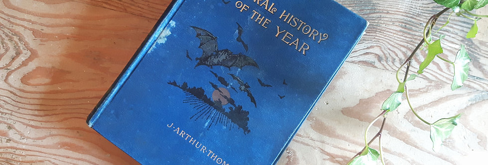 The Natural History of the Year - J. Arthur Thomson