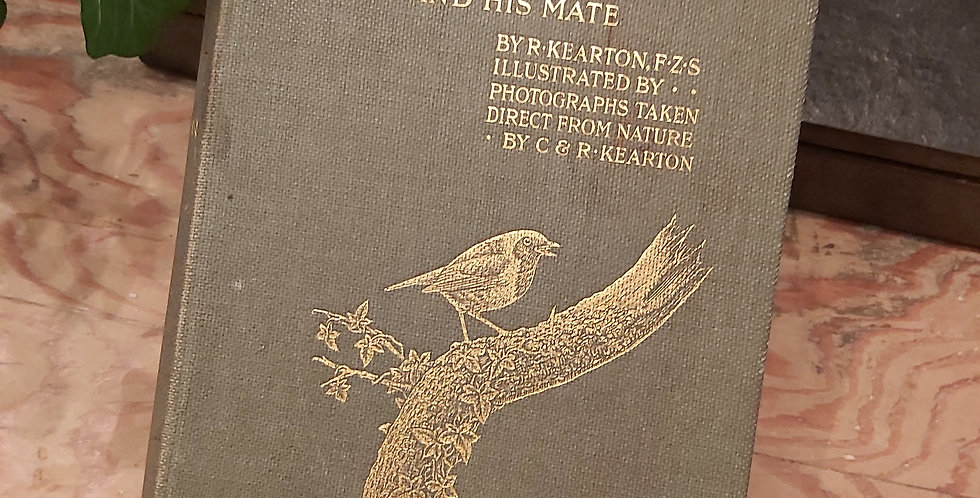 The Adventures of Cock Robin and His Mate - R. Kearton
