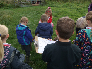 Trip to Redgrave and Lopham Fen